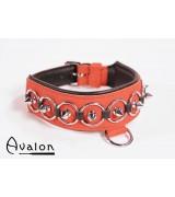 Avalon - Collar med spisse nagler, ringer og D-ring  - Rød og sort