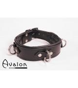 Avalon - Enkel Collar med D-ringer og polstring, Sort