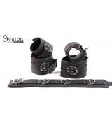 Avalon - DENY - Collar og Cuffs, 5 deler, Sort